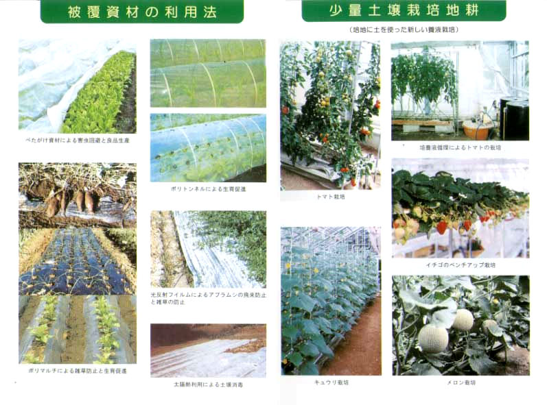 被覆資材の利用法&少量土壌栽培地耕